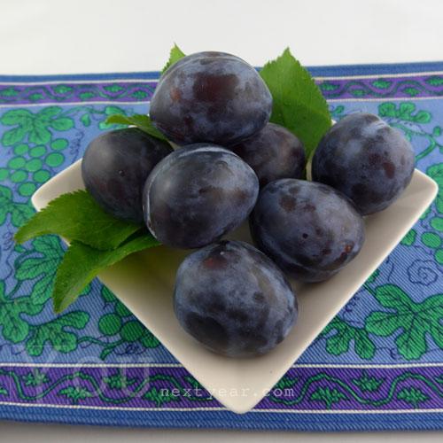 Fresh purple Italian Prune Plums