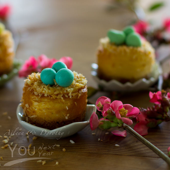 Mini cheesecakes sprinkled with toasted coconut nests that are filled with little chocolate eggs. Closeup amidst spring quince blossoms.
