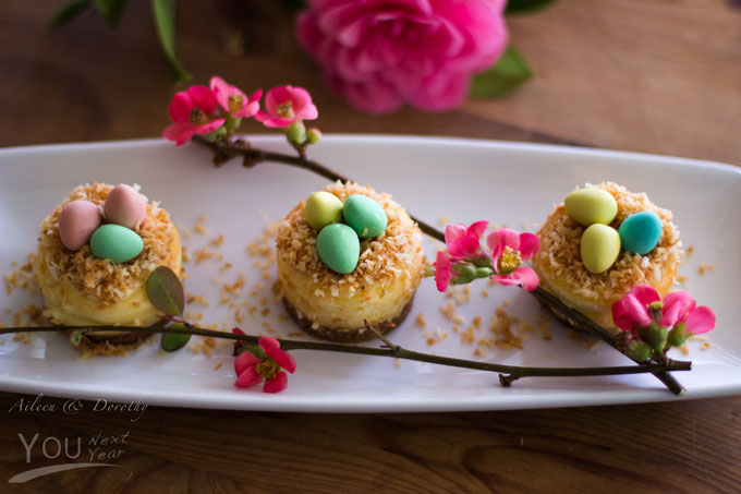 Mini cheesecakes sprinkled with toasted coconut nests that are filled with little chocolate eggs. Quince blossoms garnish. That's a camellia you see in the background.