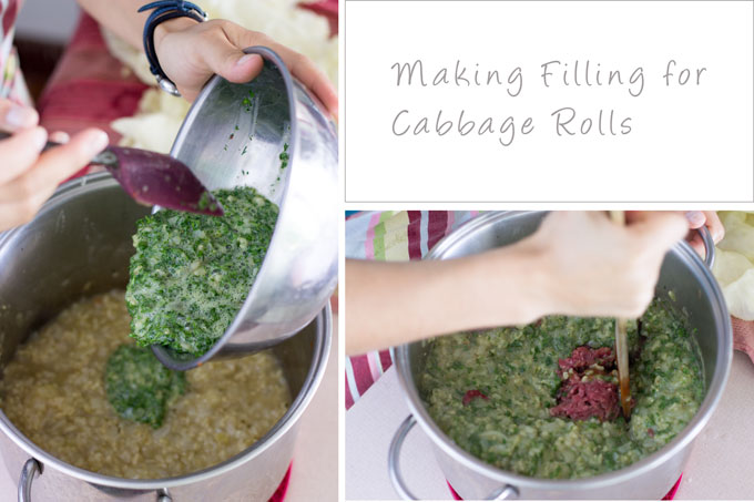 Making cabbage roll filling. Stirring parsley, dill and meat into rice, onions and stock.